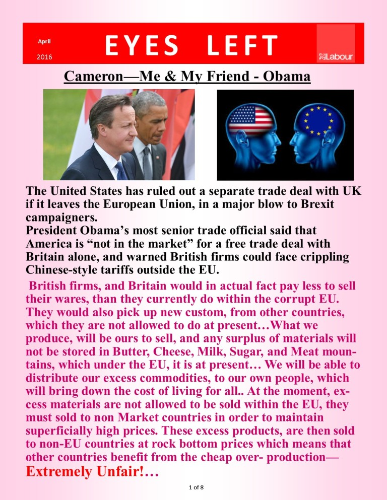 Publication 1   Cameron  My friend Obama 1 of 8
