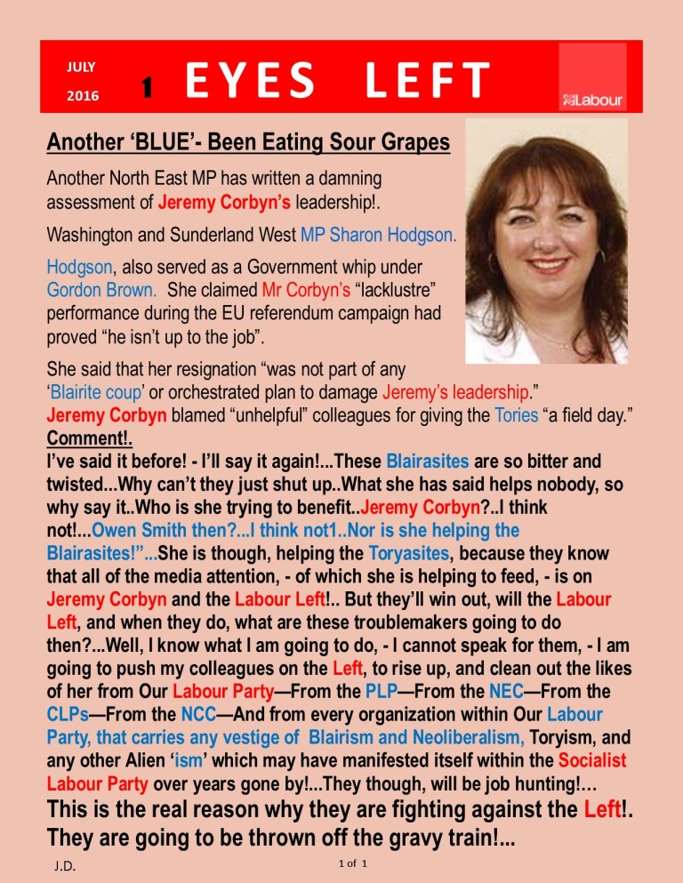 Publication 1   Sharon Hodgson MP