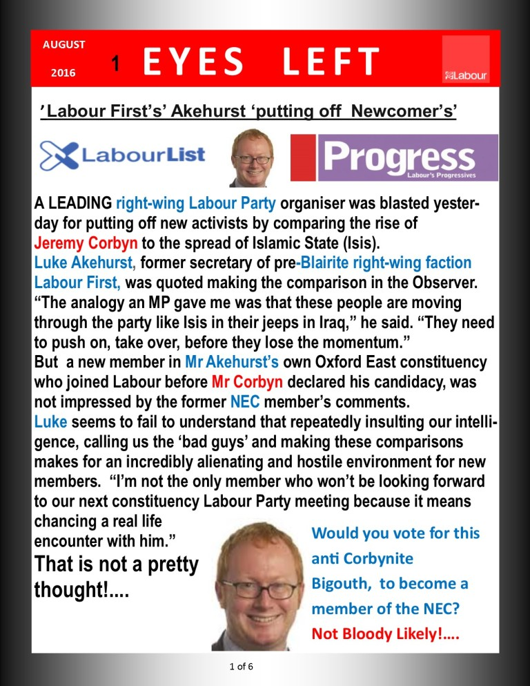 Publication1      Akehurst Labour First 1 of 6
