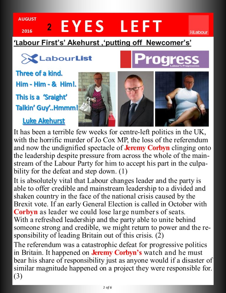 Publication1      Akehurst Labour First  2of 6