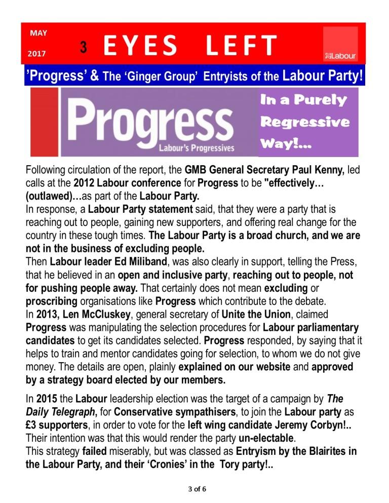 Publication1 Progress Report 3 0f 6