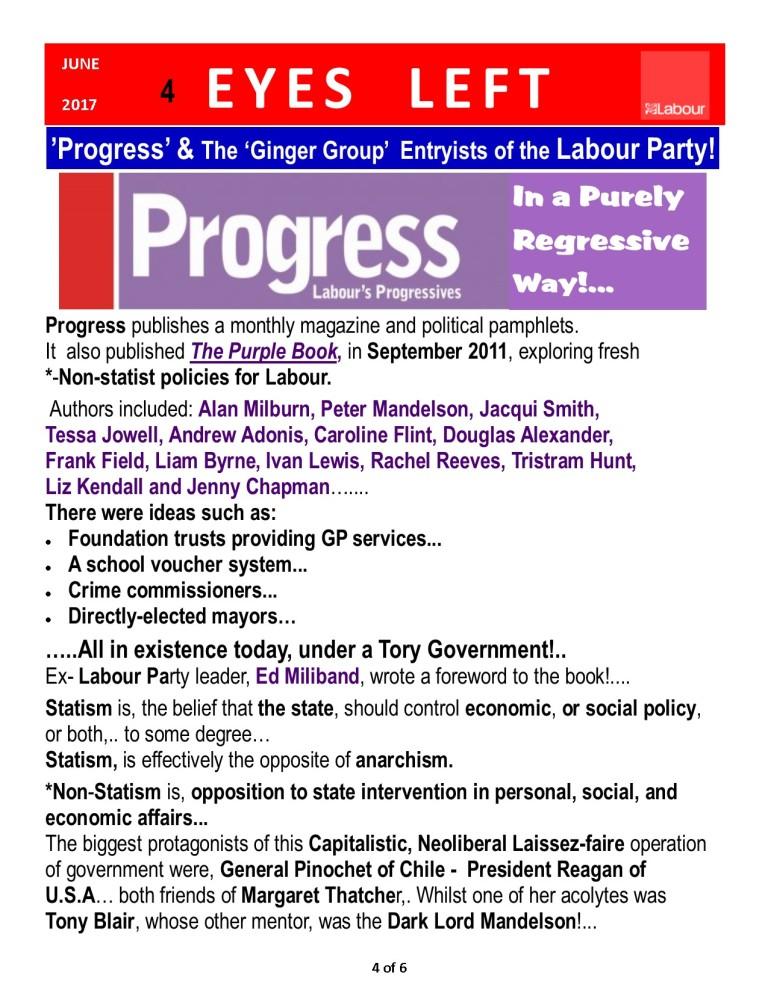 Publication1 Progress Report 4 0f 6
