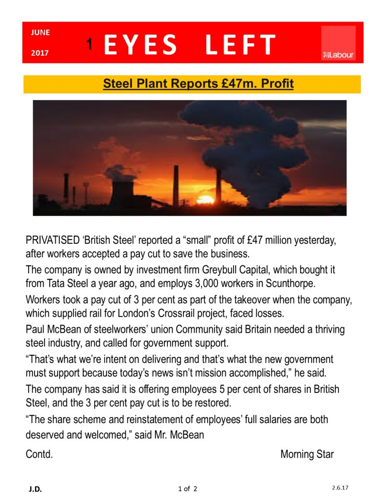 Publication1 Steel Plant profit 1 of 2