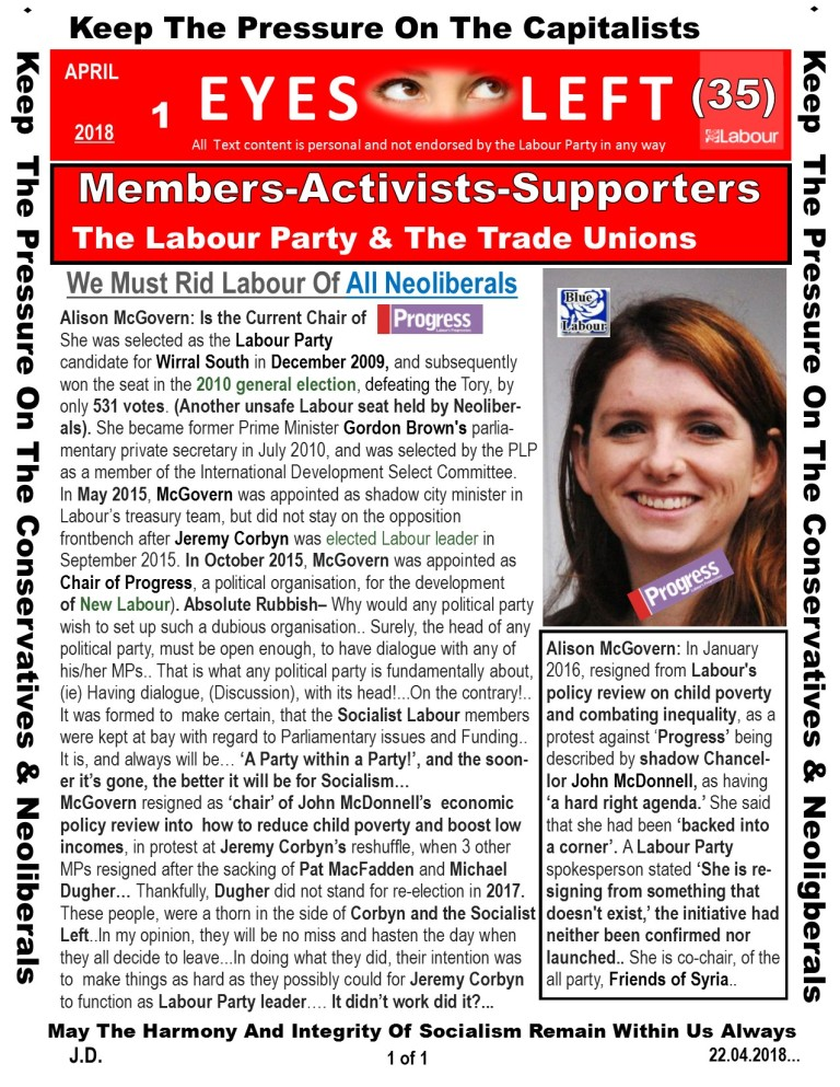Publication 1 Eyes Left Alison Mc Govern and Progress
